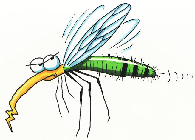 Le karma du moustique 10