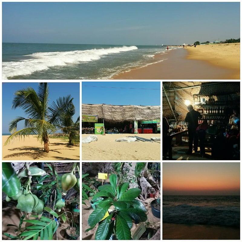 Photos du Sri Lanka 16