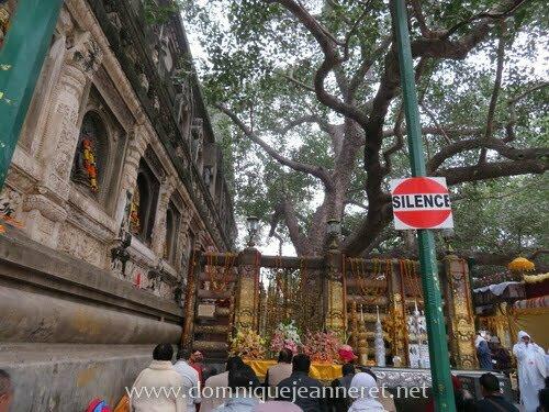Le bouddhisme et la vie des moines de tradition Theravada 2