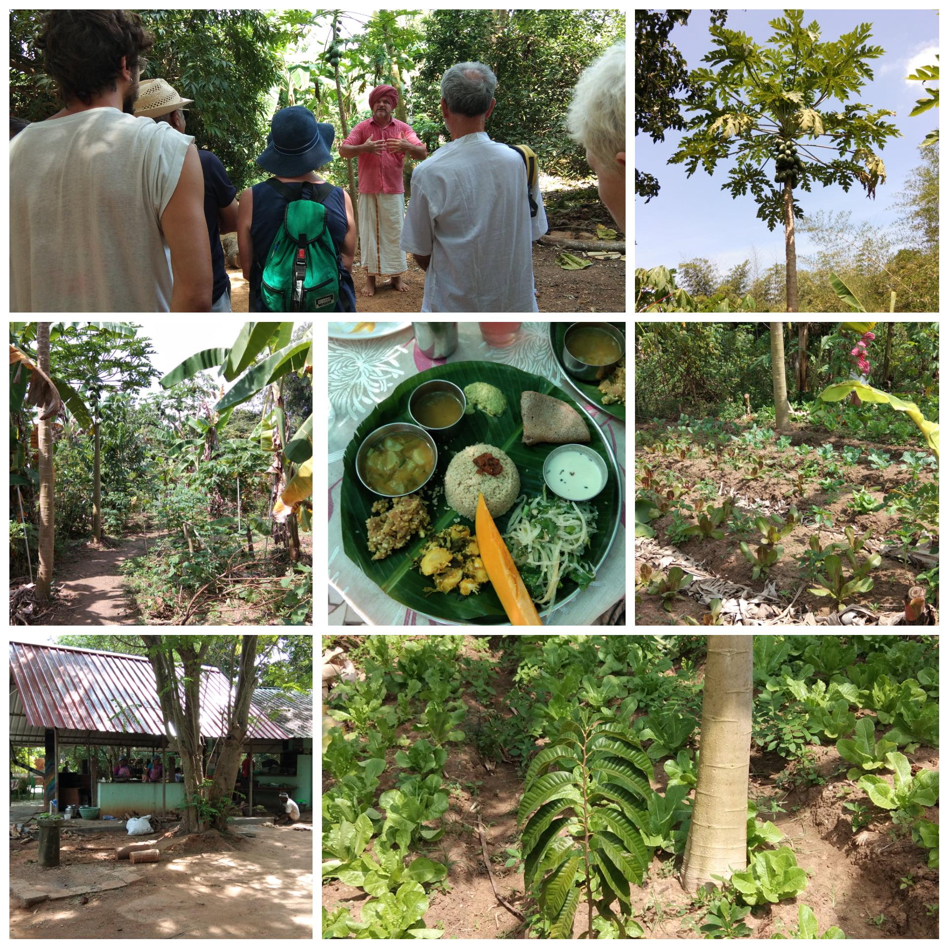 Petit séjour à Pondichéry, Auroville & Mahabalipuram (Inde) 3