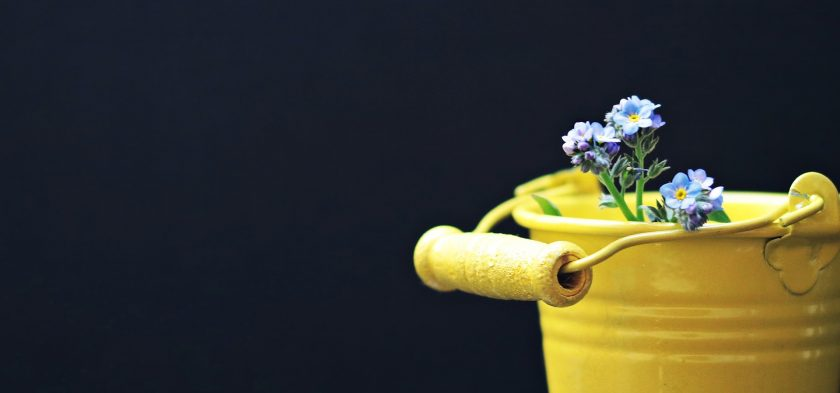 Confinement, solitude et résilience, cadeau de la vie 5