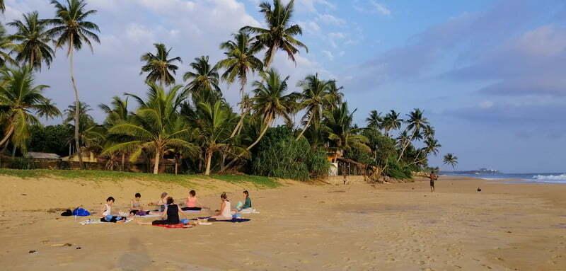 Retour et témoignages sur le voyage au Sri Lanka 2020 1
