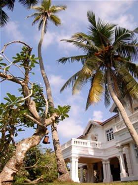 Retour et témoignages sur le voyage au Sri Lanka 2020 2