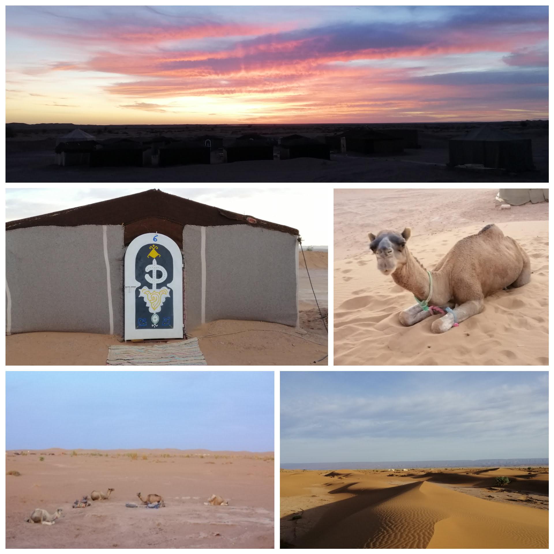 15 au 26 février 2021 : Voyage culturel et de ressourcement dans le désert au Maroc 9