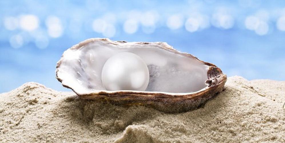 Atelier : Découvrir la Perle en Soi 1